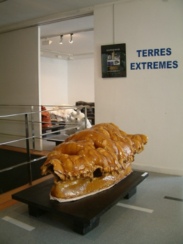 Terres Extremes2